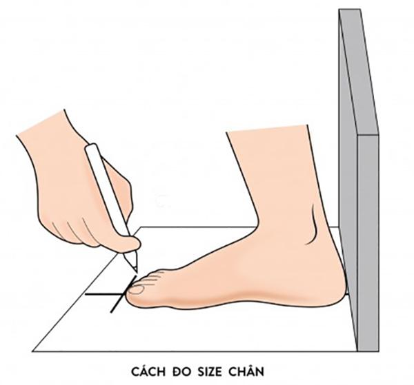 Cách đo size chân để chọn size giày chuẩn